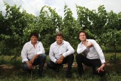 (from left): Joe (director), John (managing director) and Joe's son Daniel (commercial manager) are involved in the day-to-day running of the AUD$400 million business which recently acquired Peter Lehmann Wines